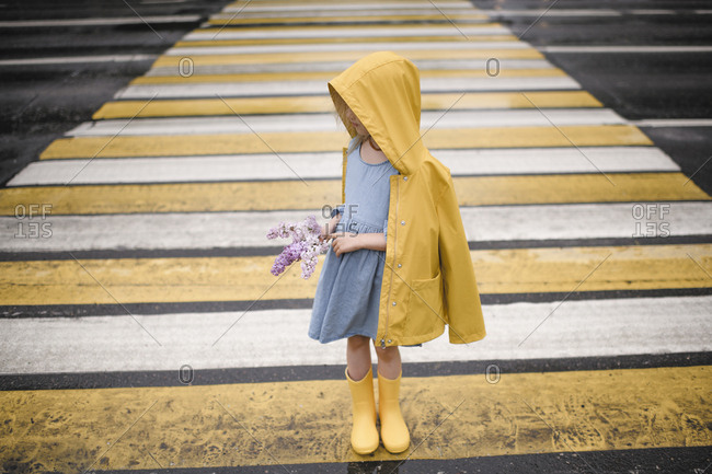 Girl wearing yellow rainjacket- standing on zebra crossing- holding lilac
