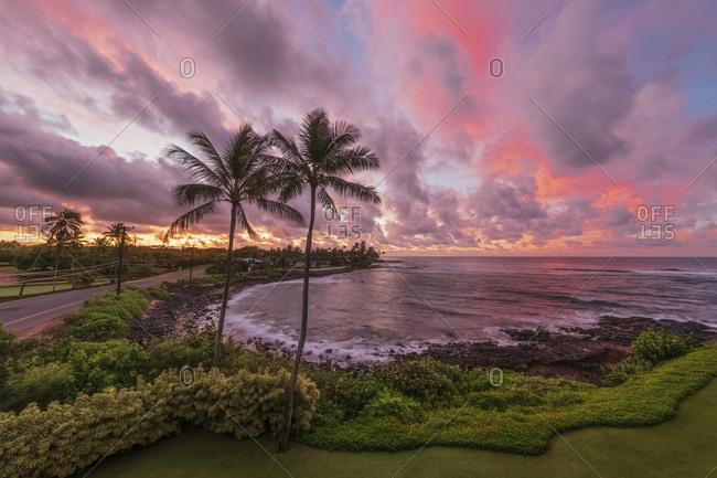 USA Pazific Ocean- Hawaii- Kauai- Poipu- Hoai Bay- Palms at beach at dawn