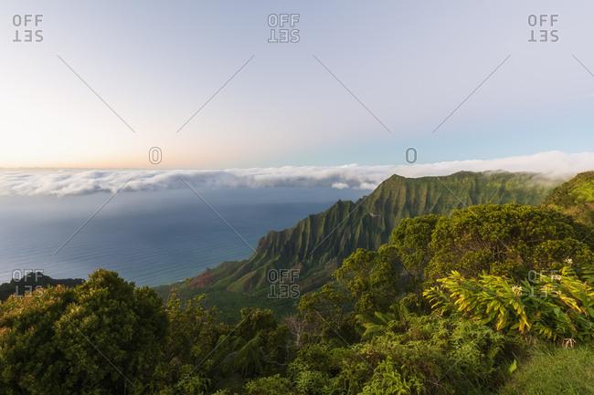 USA- Hawaii- Koke'e State Park- Koke'e State Park- View to Kalalau Valley