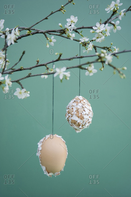 Easter decoration- Easter egg with eggshells hanging on twig