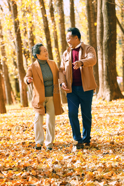 Elderly couple walking in the woods