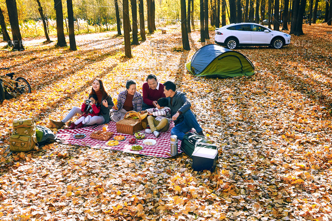 Happy family outdoor outing - Offset