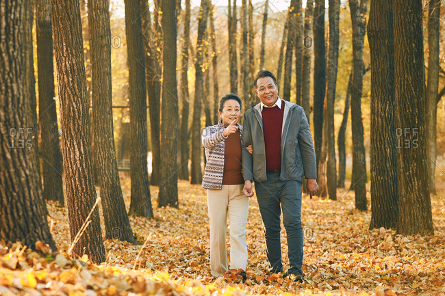 Elderly couple walking in the outdoors