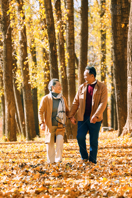 Elderly couple walking in the woods