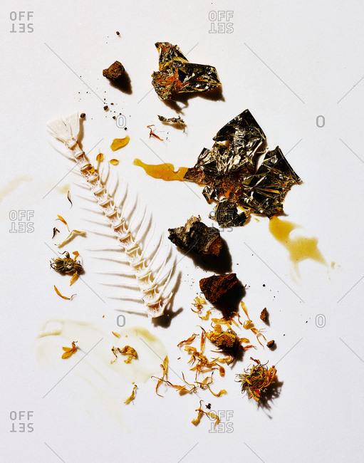 Fish bones and flowers on white background
