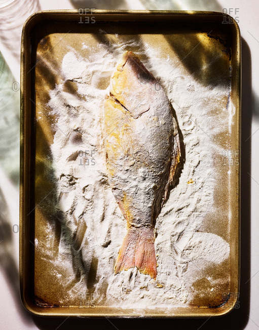 Overhead view of whole fish coated in flour on a baking pan