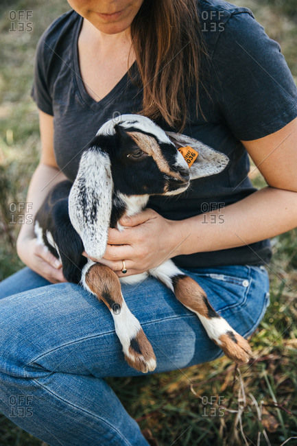 Woman holding a baby goat on her lap.