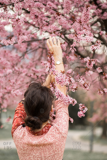 Woman holds onto a cherry blossom branch