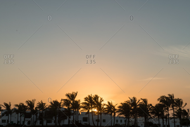 Majestic view of wonderful sunrise sky over modern buildings and palms in morning in small town