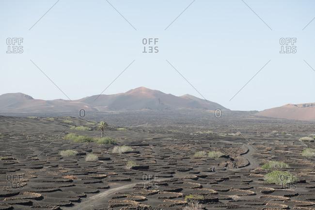 Wonderful stony terrain on sunny day