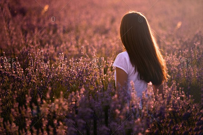 Woman in blooming field during sunset