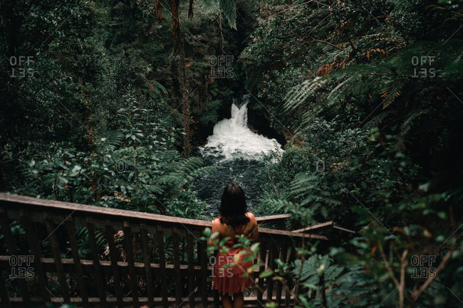 From above back view of female on stairs looking at narrow fast river with cascade between green exotic trees of forest