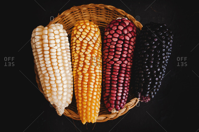 From above dried corn of various colors placed in braided basket against black background