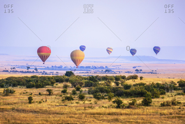 Hot air balloons flying over savanna landscape, Kenya, Africa