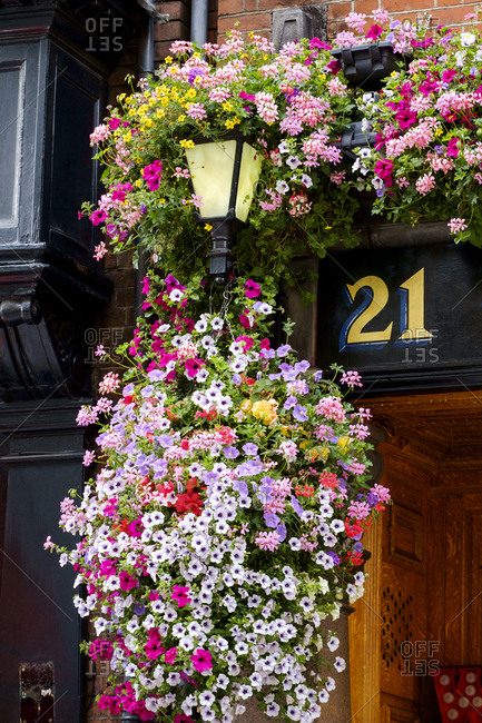 April 10, 2019: Flowers hanging near number 21 outdoors, Dublin, Leinster, Ireland