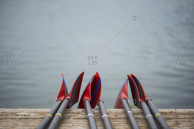Rowing blades on the dock, Old Welland Canal; Toronto, Ontario, Canada