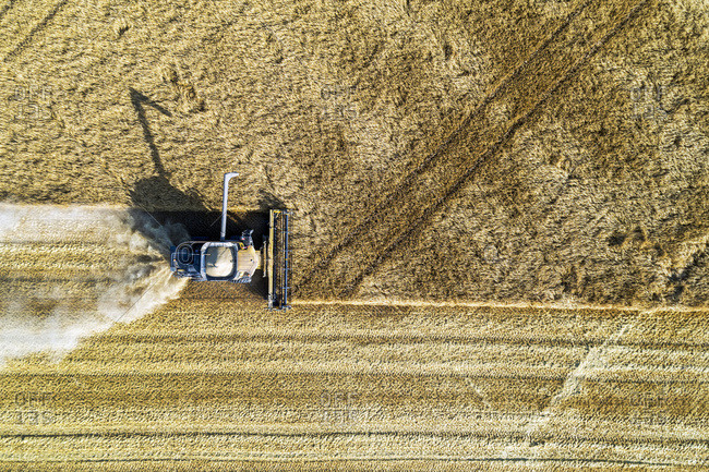 View from directly above of a combine cutting a barley field; Blackie, Alberta, Canada