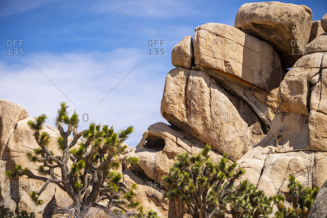 A cave-like hollow in a large rock formation, Joshua Tree National Park, California, United States of America