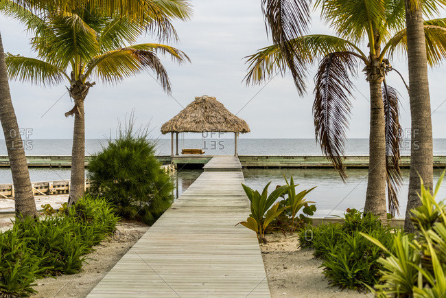 Boardwalk leading to dock lined with palm trees and a view out to the ocean; Belize