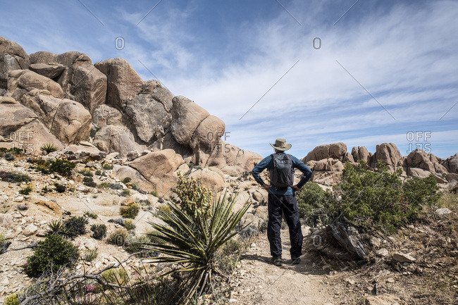 A senior man standing on a trail in Joshua Tree National Park looking at rock formations; California, United States of America