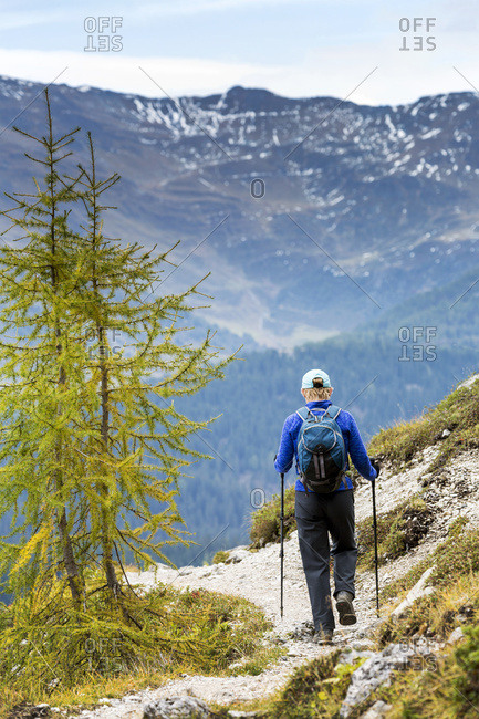 Female hiker along alpine trail with autumn colours and valley below; Sesto, Bolzano, Italy