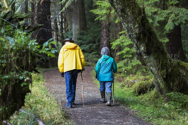 A senior couple walking on Golden Spruce Trail in an old growth forest; Port Clement, Haida Gwaii, British Columbia, Canada