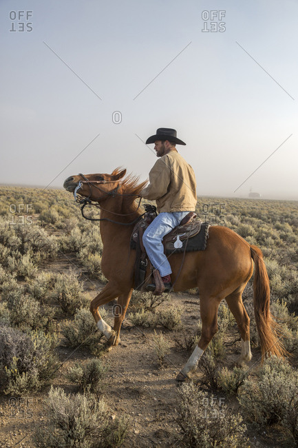 USA, Nevada, Wells, - September 22, 2014:  cowboy and wrangler Clay Nannini out early herding the mustangs at Mustang Monument, A sustainable luxury eco friendly resort and preserve for wild horses, Saving America's Mustangs Foundation