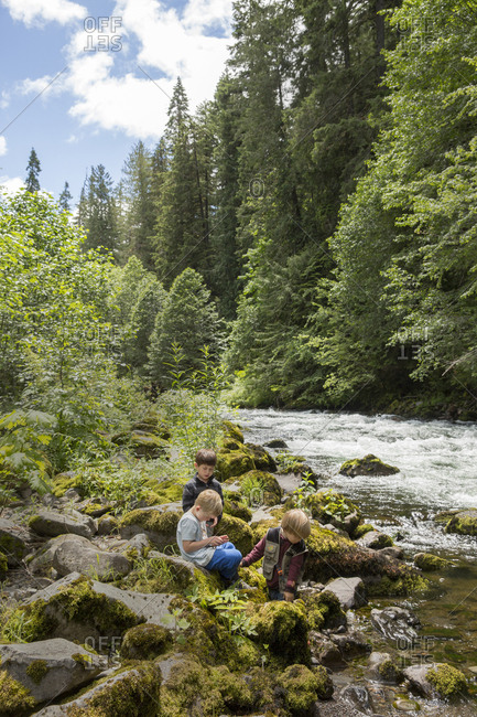 USA, Oregon, Santiam River, - June 29, 2014:  , young boys playing in the Willamete National Forest near the Santiam River