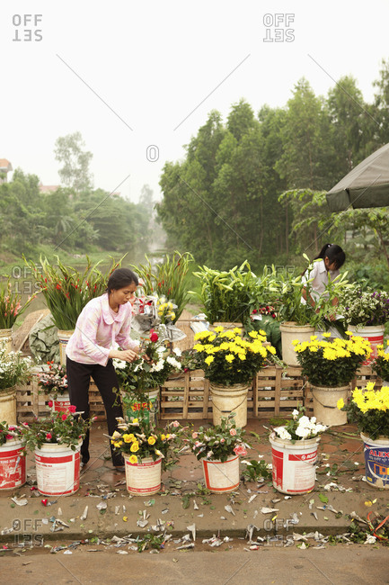 VIETNAM, Hanoi,  - April 13, 2010: Countryside, women sell flowers at a road side market in Thanh Bac Ninh