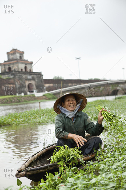 VIETNAM, Hue,  - April 16, 2010: Nguyen Thi Ngan picks a leafy green vegetable called rau muong in the Citadel canal