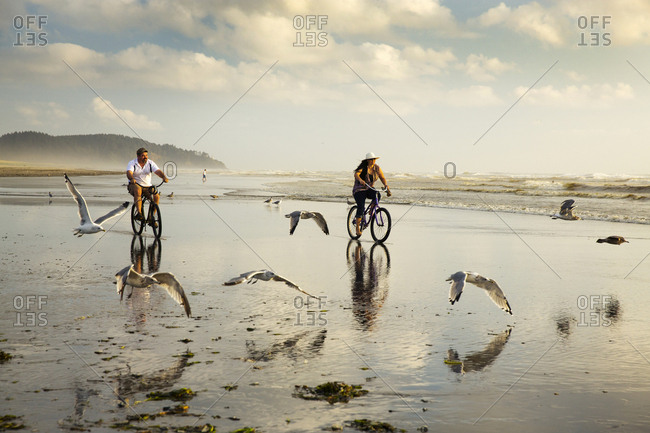 USA, Washington State, Long Beach Peninsula,  - August 20, 2014: International Kite Festival, Walter and Erin Ellison ride their bikes through the seagulls on the beach at low tide during sunset
