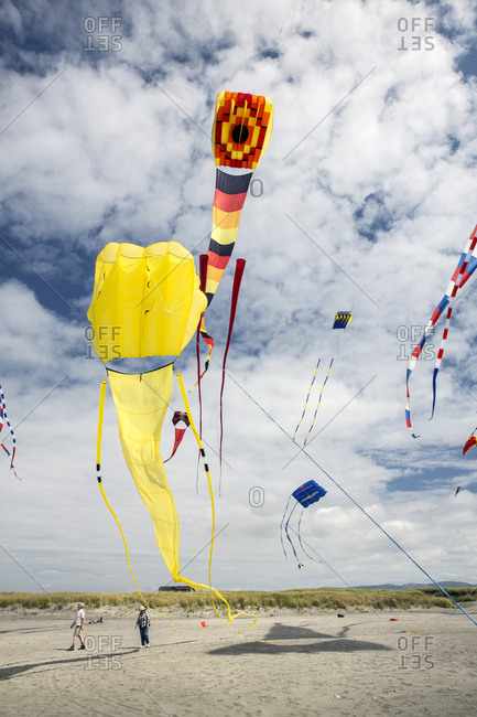 USA, Washington State, Long Beach Peninsula,  - August 21, 2014: large kites fly in the wind at the International Kite Festival