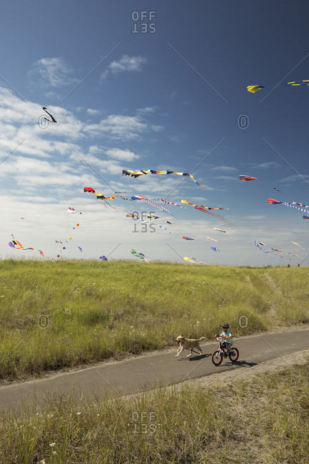 USA, Washington State, Long Beach Peninsula,  - August 21, 2014: International Kite Festival, boy rides his bike with his dog on the path that runs parallel to the Long Beach Boardwalk