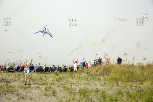 USA, Washington State, Long Beach Peninsula, - August 23, 2014: International Kite Festival, launching a kite on the grassy dunes at the kite festival