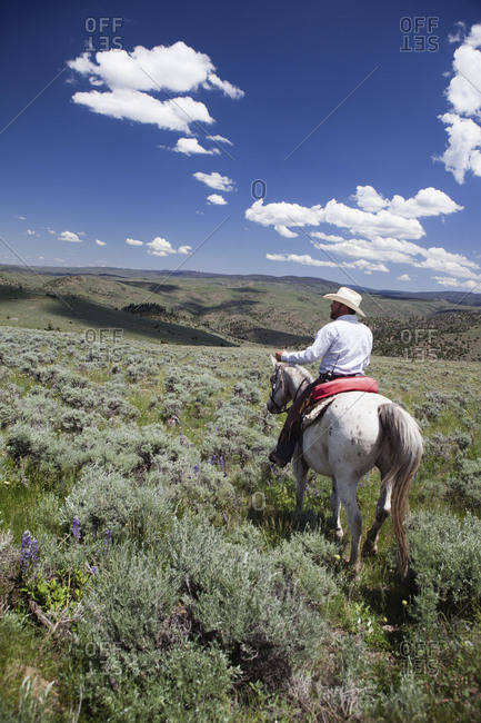 USA, Wyoming, - June 30, 2010:  Encampment, a cowboy rides his horse through the sage brush landscape, Abara Ranch
