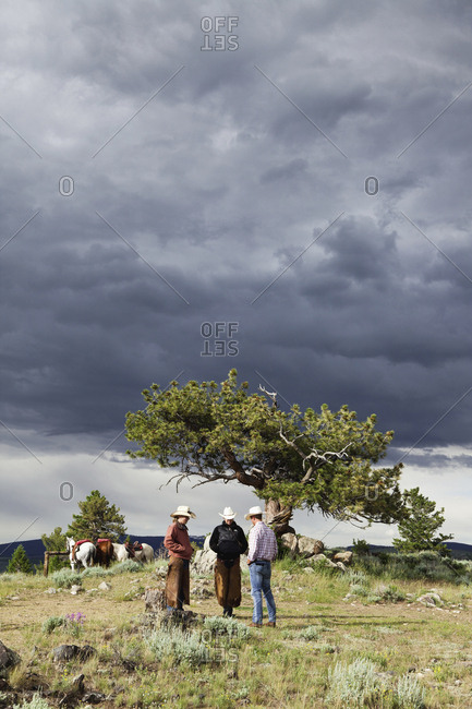 USA, Wyoming, - July 2, 2010:  Encampment, wrangelrs on a mountain top wait for trail riders near a dramatic tree, Abara Ranch