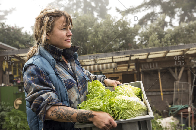 USA, California, Big Sur, Esalen,  - May 13, 2013: Kat carries some freshly picked lettuce from the Farm at the Escalen Institute