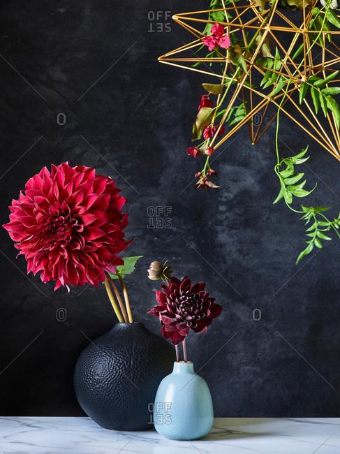 Dahlia flowers in vases on dark background