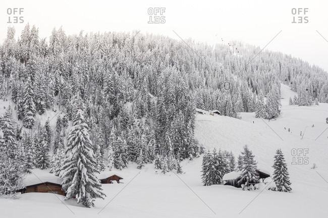 Winter landscape at Soll, Wilder Kaiser, Tirol, Austria
