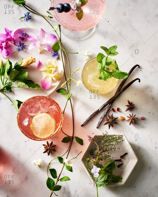 Variety of deconstructed botanical cocktails