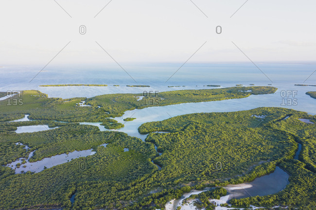 Aerial view of water flowing from the ocean to the rainforests on the island of Holbox in Mexico
