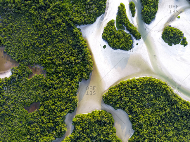 Aerial view of water flowing from the ocean to the rainforests on the island Holbox in Mexico
