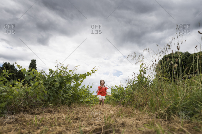 Child runs towards camera between line of vines against cloudy sky