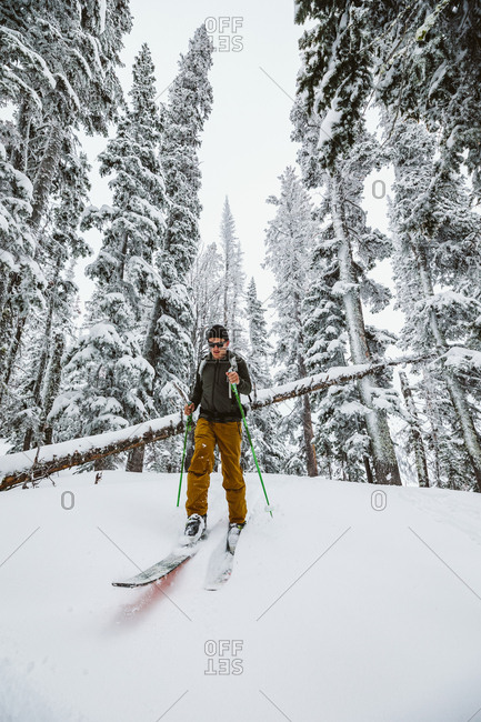 Lone skier comes out the trees during a winter adventure