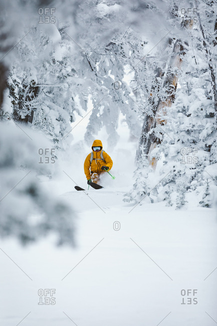 Skier in yellow jacket makes turns through snow covered trees