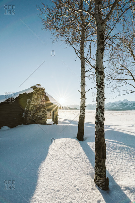 Jackson, Wyoming - January 13, 2019: A log cabin in an aspen grove during sunset under the mountains