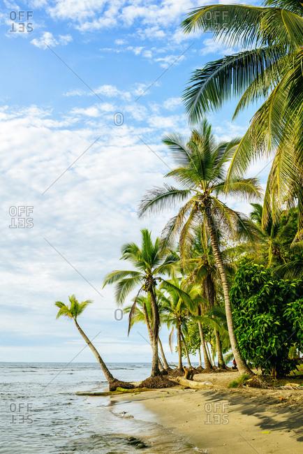 Costa Rica- Chiquita Beach