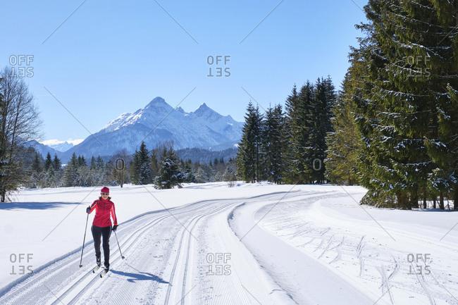 Germany- Bavaria- Wallgau- Isar Valley- Canada trail- cross country skier in winter landscape