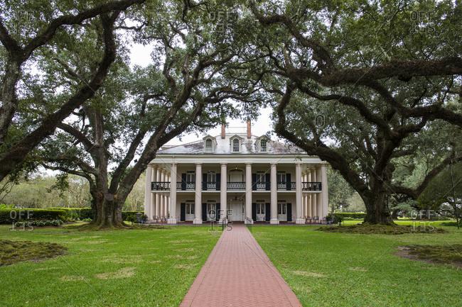 November 16, 2015: USA- Louisiana- Oak trees- alley and Nottoway plantation house