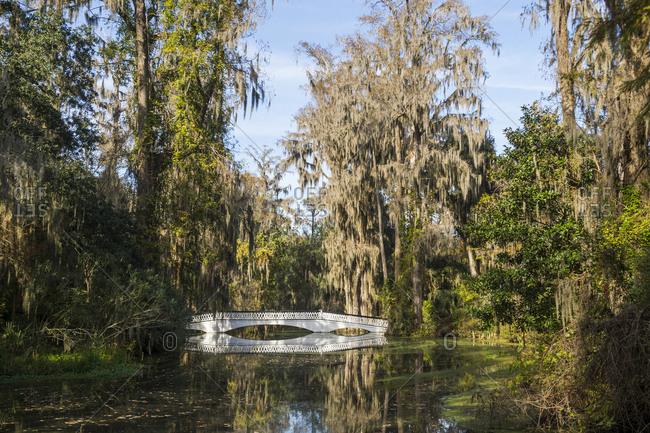 USA- South Carolina- Charleston- White bridge reflecting in a pond in the Magnolia Plantation